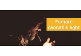 Come fumare cannabis light: i consigli di cbdexpress